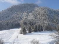 Aussicht aus den Ferienwohnungen Geißberg und Falkenberg