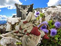Decken und Kissen 1