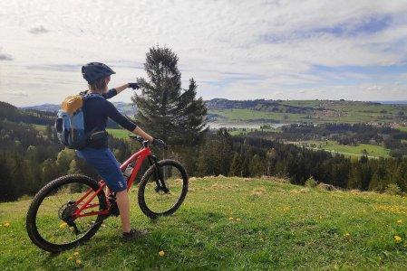 mittelburg-oy-mittelberg-blog-natur-001