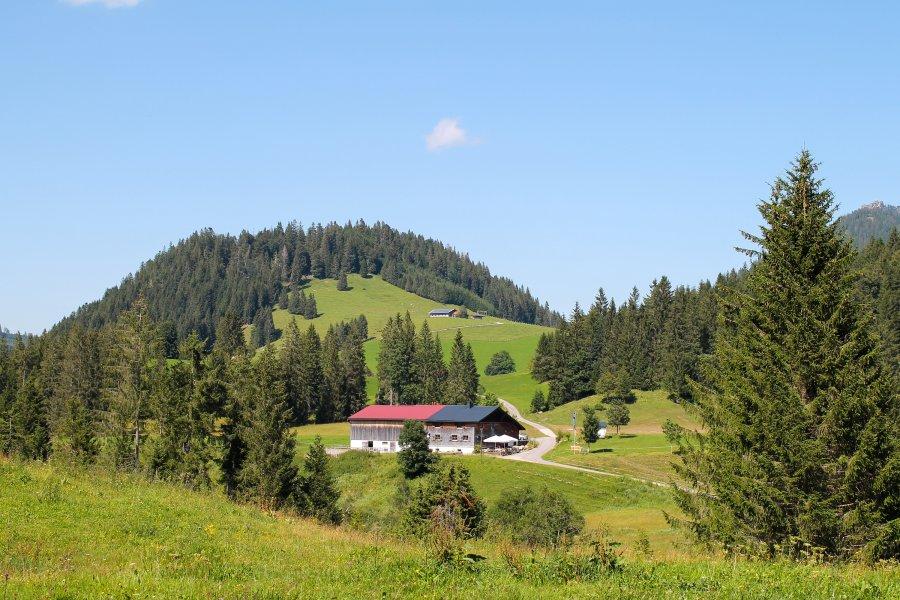 panoramahotel-oberjoch-Alpe-Untere-Schwande-Kaese-002