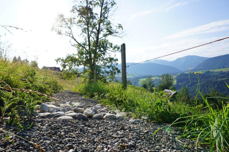 Bergkristall-Social-Blog-September2020