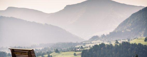 Bergkristall - Ofterschwang