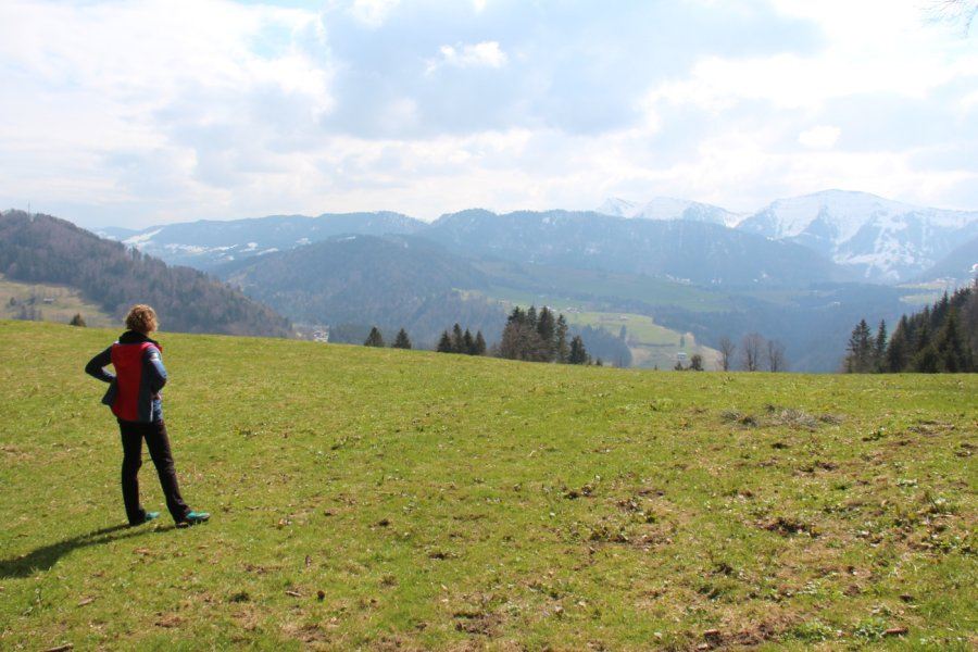 Diana - Oberstaufen