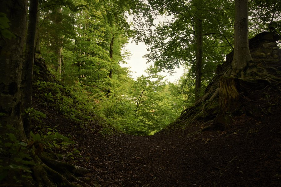 Wanderherbst - SocialBlog - Oktober