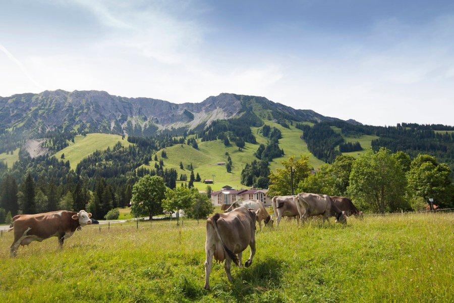 alpin-chalets-bad-hindelang-blog-aug-18-02