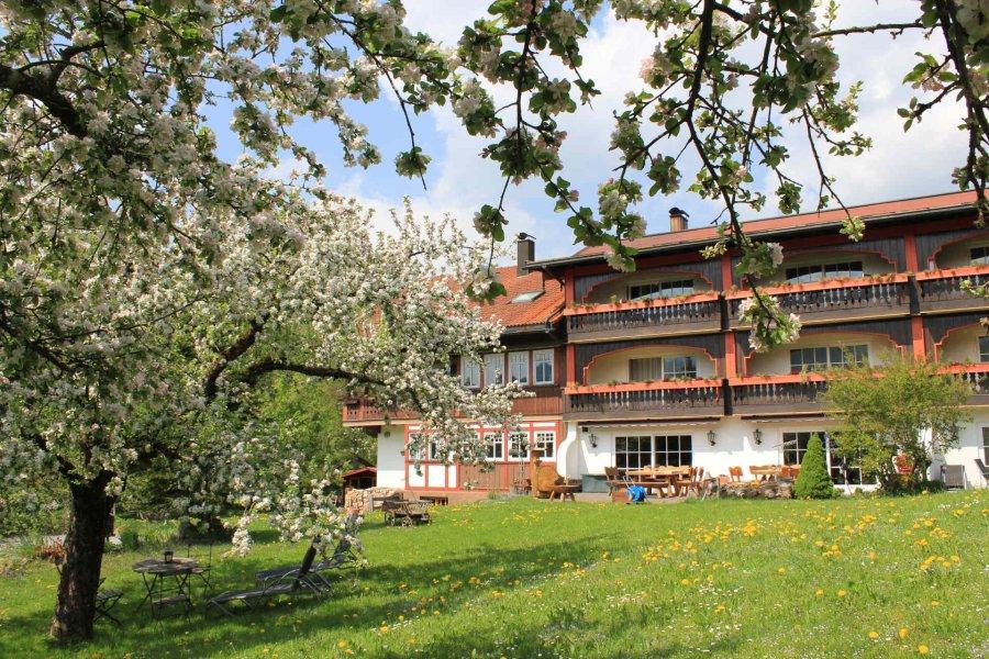 muehlenhof-oberstaufen-blog-grünes-allgäu001.JPG