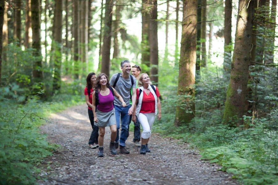 rosenalp-oberstaufen-wandern-blog-natur-001