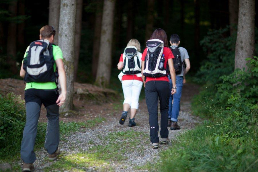 rosenalp-oberstaufen-wandern-blog-natur-002