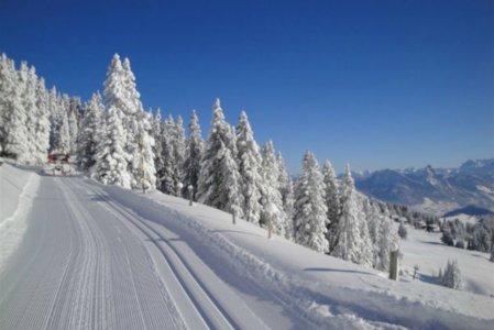 edita-scheidegg-ski