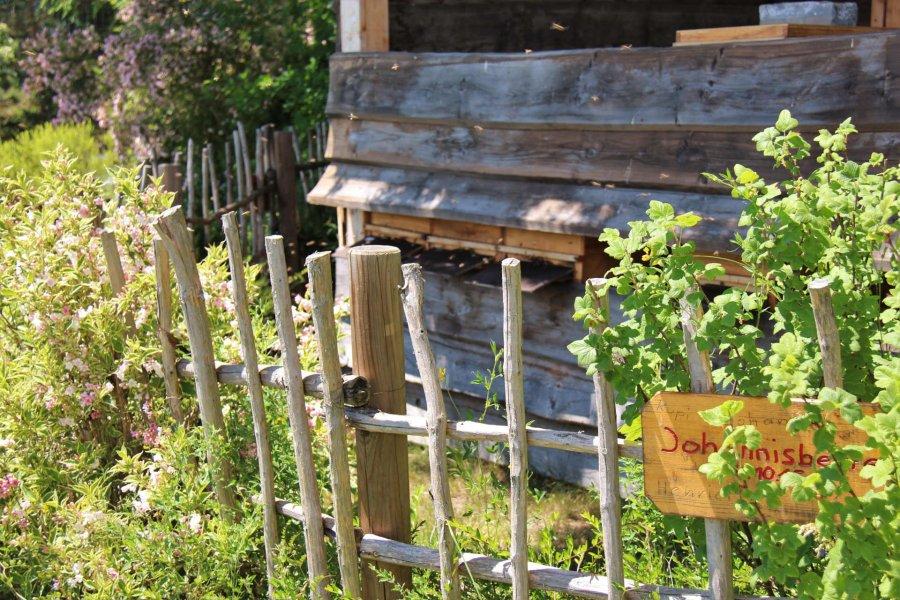 sonnenalp-ofterschwang-blog-juli-bild005