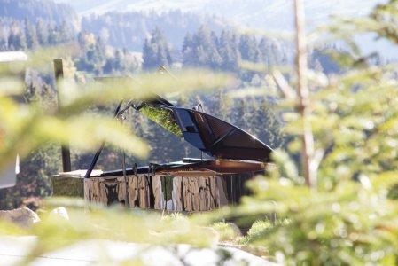 haubers-oberstaufen-blog-august-natur