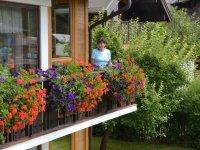 Mehrfach preisgekrönte Oberstdorfer Blumenpracht