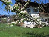 Unser Haus im Frühjahr