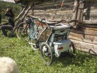 Thule Chariot Cross 2021