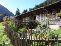 Buchrainer Alpe Garten