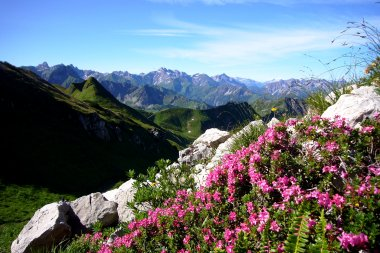 Sommerpanorama vom Nebelhorn
