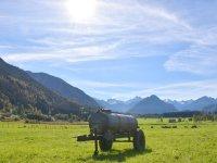 Landwirtschaft auf den Dörfern - Weidebetrieb