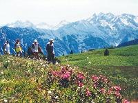 Wanderung am Fellhorn