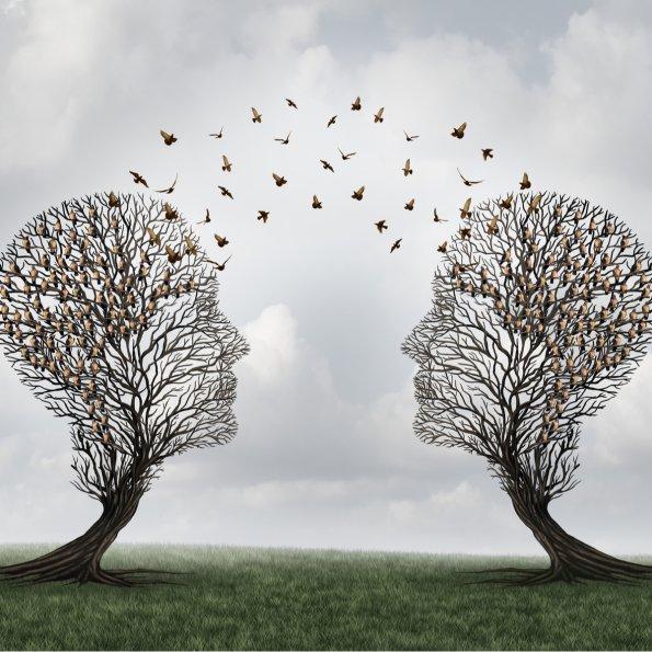 Bäume kommunizieren quadratisch shst.-gekauft