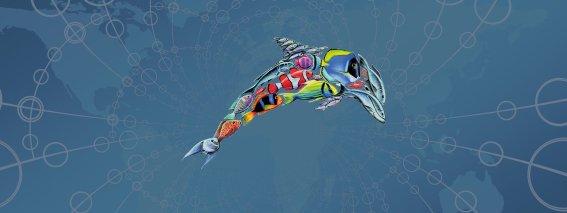 Empowerment Delphin fast & lean