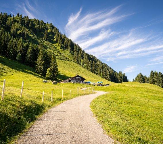 Auf dem Weg zur Alpe Schrattenwang
