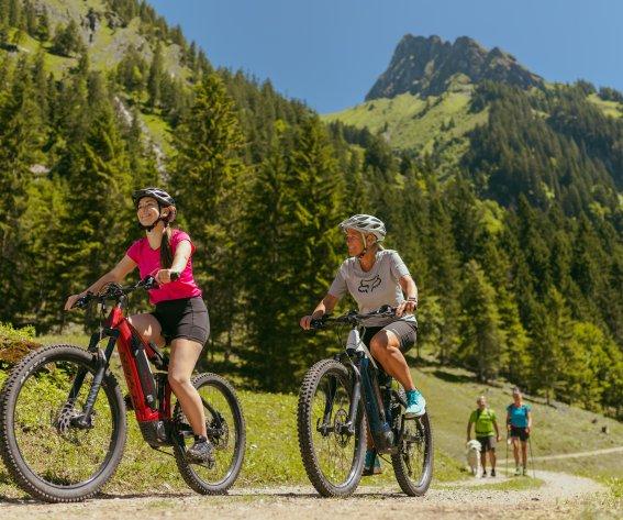 An der Gerstruber Alpe