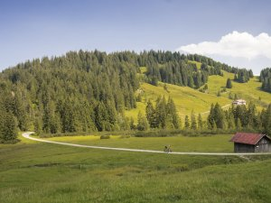 Auf dem Weg zur Toniskopf Alpe