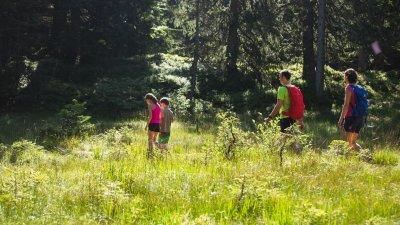 Zu Fuß über die Wiesen