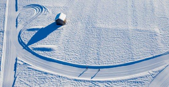 Unberührte Schneelandschaft beim Langlaufen bewundern.