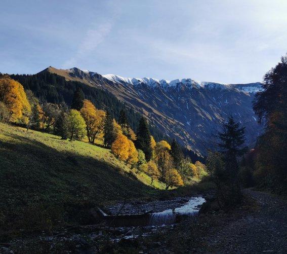 Traufbachtal (3)