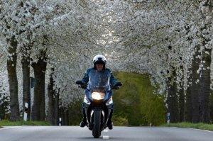Oberstdorfer Fotogipfel - Motorrad-WS
