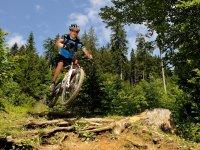 Rasante Mountainbiketour