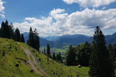 Wallraffweg