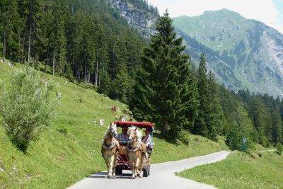 Pferdekutsche Oytal
