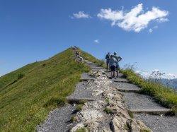 Weg zum Fellhorn Gipfel 2