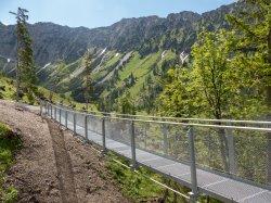 Hängebrücke Uff dr'Alp