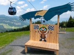 Die neue Adler7 Bahn
