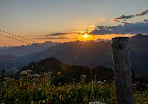 Zaun im Morgenlicht