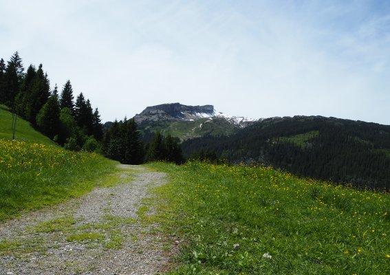 Die ersten Meter Richtung Auenhütte