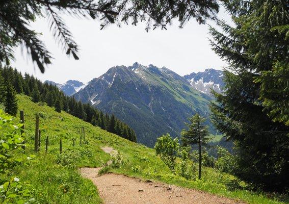Anstieg Stutzalpe-Gipfel