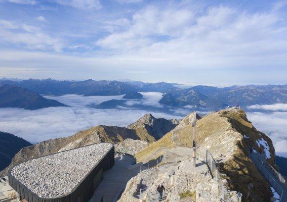 Obheiter am Nebelhorn Gipfel