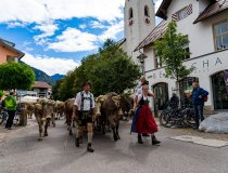 2017-09-11 Alpe Schlappold-014-3000