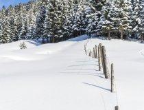 2017-12-29 Winterwonderland-005-3000