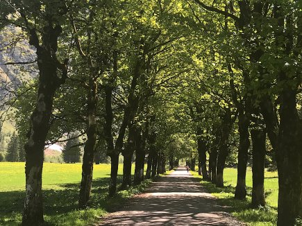 Oytal-Allee