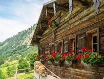 Traufbachtal im Sommer
